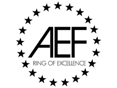 AEF-Logo-Black 400